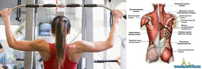 зачем тренировать мышцы спины