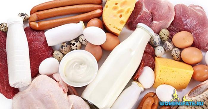 жир в продуктах