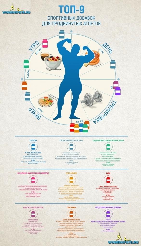 Расписание приема спортивное питание для роста мышц